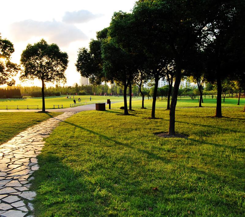 Century Park in Shanghai. Foto: Sunshinepig / Shutterstock.com