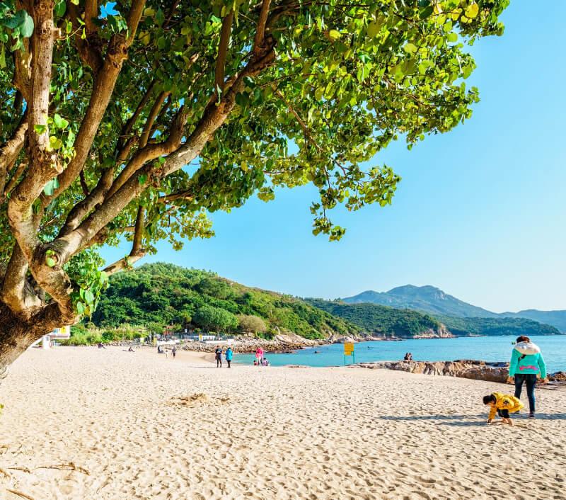 Foto: eWilding / Shutterstock.com