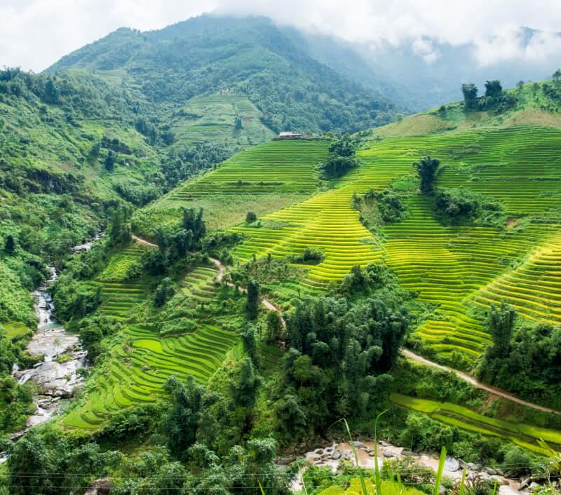 Die Provinz Lai Châu in Nordvietnam. Foto: Phuong D. Nguyen / Shutterstock.com