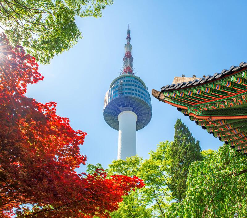 Der N Seoul Tower ist eines der Wahrzeichen von Seoul. Foto: Guitar photographer / Shutterstock.com