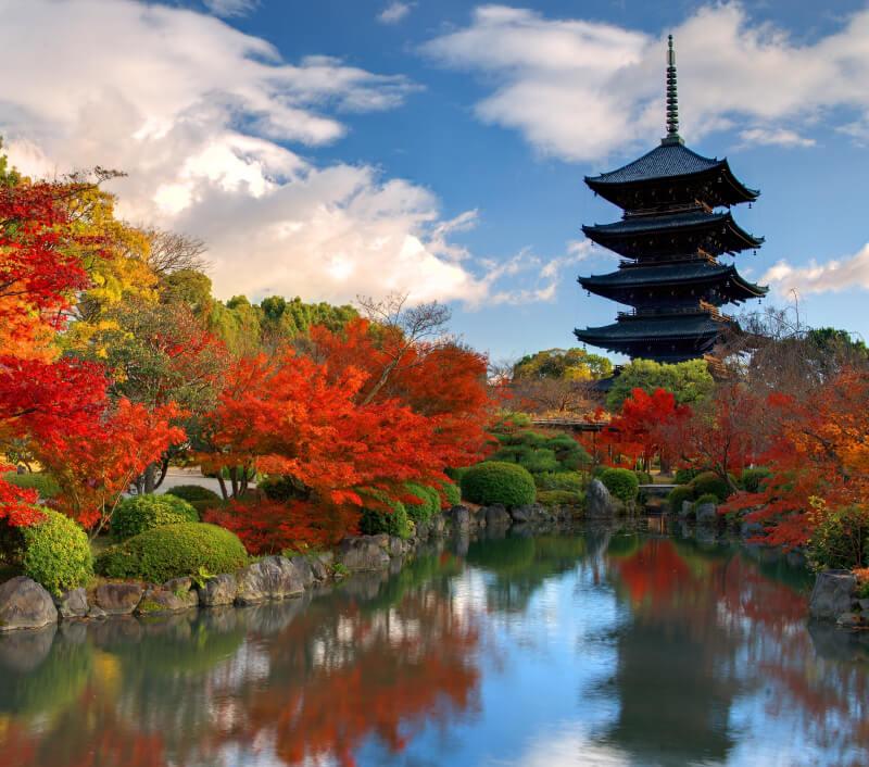 Das japanische Nara mit seinen vielen alten Tempeln. Foto: Sean Pavone / Shutterstock.com