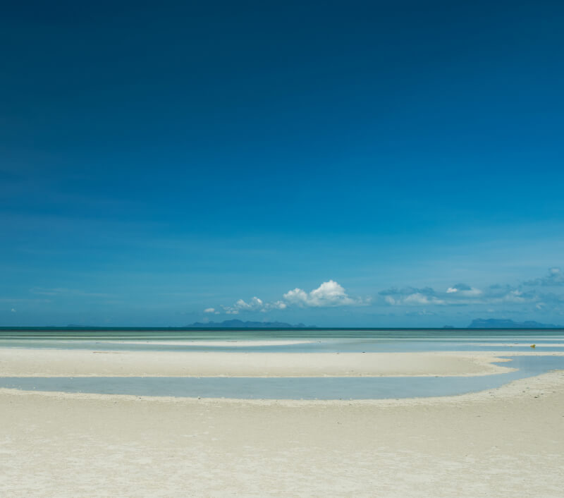 Foto: sasiphoto / Shutterstock.com