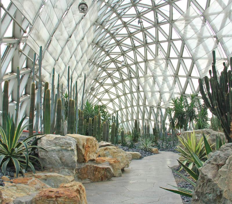 Der Botanische Garten von Shanghai. Foto: Haobo Wang / Shutterstock.com