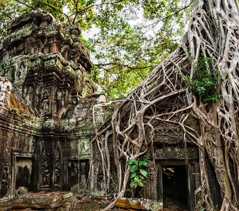 Das berühmte Siem Reap in Kambodscha. Foto: Perfect Lazybones / Shutterstock.com